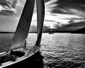 Evening sail.